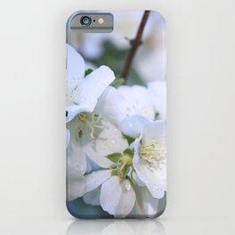 Hawthorne Flowers After Rain iPhone Case
