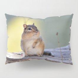 Chubby Pillow Sham