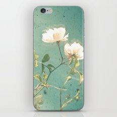 White Rose iPhone & iPod Skin