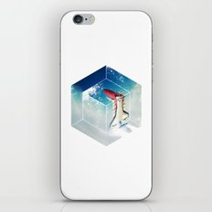Into the Fourth Dimension iPhone & iPod Skin