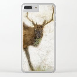 Grand Canyon Elk No. 2 Wintered Clear iPhone Case