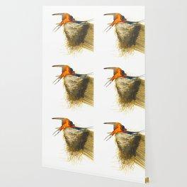 Barn Swallow John James Audubon Scientific Vintage Illustrations Of American Birds Wallpaper