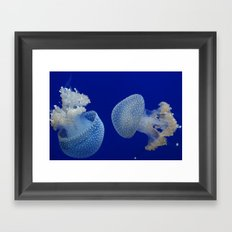 Jelly Fish Framed Art Print