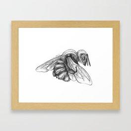 Things We Need (Bee Detail) Framed Art Print