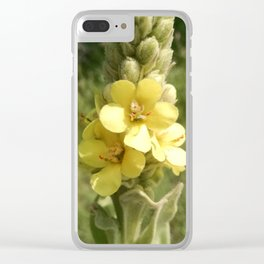 Common Mullein Clear iPhone Case