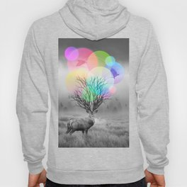 Calm Within the Chaos Hoody