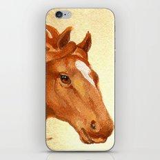 Redhead - Chestnut Hunter Horse iPhone Skin