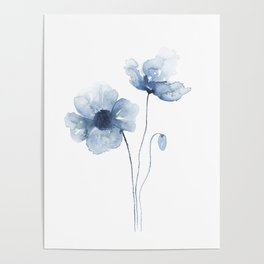 Blue Watercolor Poppies Poster