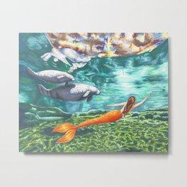 Swimming with Manatees Metal Print