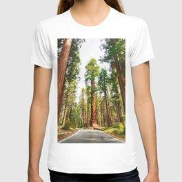 sierra nevada T-shirt