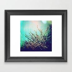 Holga Flowers I  Framed Art Print