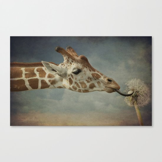 Cute baby Giraffe Canvas Print