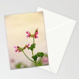 Geraniums (Pelargonium) #5 Stationery Cards