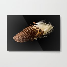 Seeds of Swamp Milkweed plant Metal Print