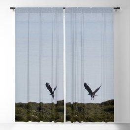 Osprey In Flight on the Ocean Blackout Curtain