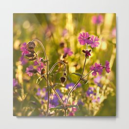 Summer Dream Wildflowers Meadow #decor #society6 Metal Print