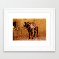 donkey Framed Art Prints featuring Donkey by Noelle Abbott