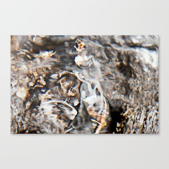 Disturb IV Canvas Print