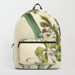 Vanda bensonii Backpack
