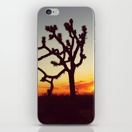 Sunset in the Mojave iPhone Skin