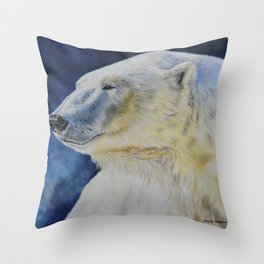 Aurora by Teresa Thompson Throw Pillow
