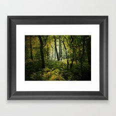 Dark Woodland Framed Art Print