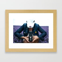 Bunny in a lavender field. Framed Art Print