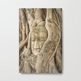 Head of Buddha, Ayutthaya, Thailand Metal Print