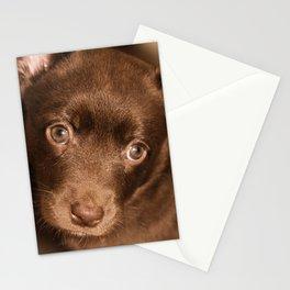 Puppy- Australian Kelpie Stationery Cards