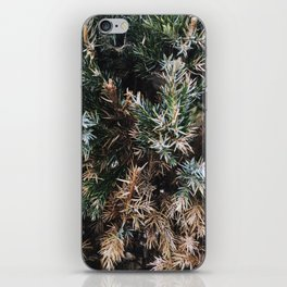Browning Bush iPhone Skin