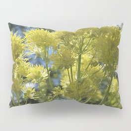 Glowing yellow meadow-rue, Thalictrum flavum Pillow Sham