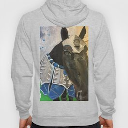 Abe; The Jousting Horse Hoody