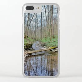 Watery Path Clear iPhone Case