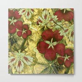 nasturtium with golden leaves Metal Print