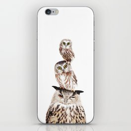 Stacked Owls iPhone Skin