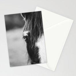 Blue Eye - horse photography Stationery Cards