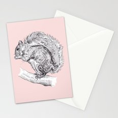 Grey Squirrel Stationery Cards