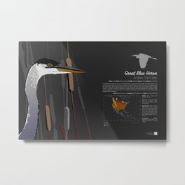 Great Blue Heron Infographic Metal Print