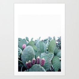 Mint Cactus Art Print