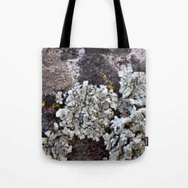 Smattering of Lichens Tote Bag