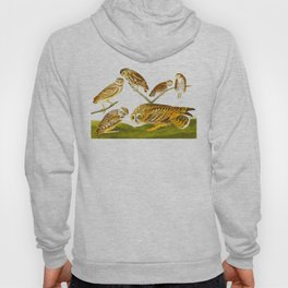 Burrowing Owl Illustration Hoody