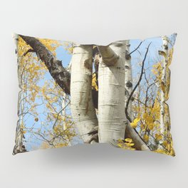 Aspens Tall and Gold Pillow Sham