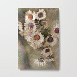 Vintage daisies. Metal Print