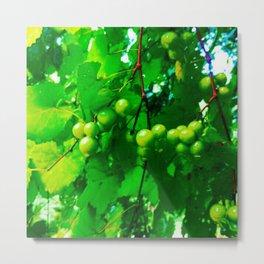 grapes in the sky Metal Print