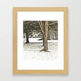 Snow in the Trees Framed Art Print