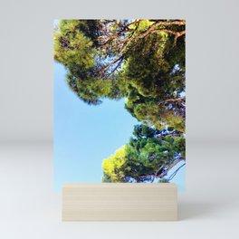 Autumn Afternoon Mini Art Print