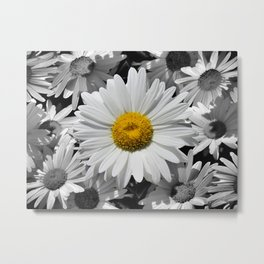 Cheerful Daisy Flower A197 Metal Print