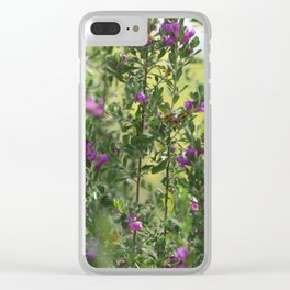 Texas Ranger Bush with Palo Verde in Background Clear iPhone Case