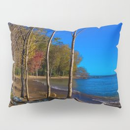Wish You Were Here Pillow Sham