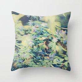 CluesBlues Throw Pillow